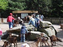Tier- und Fossilienpark Bochum