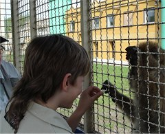 Safaripark Stukenbrock