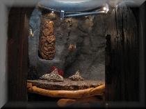 Allvitalis Traumhotel Höhlenzimmer