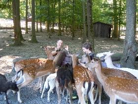 Tierpark Bretten - Wilderlebnis