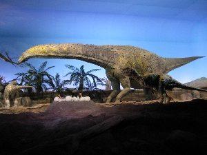 Gondwana - das Prähistorium